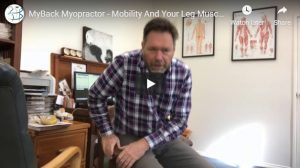How Your Leg Muscles Can Prevent Falls